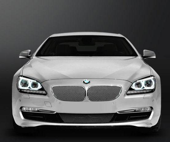 Grilles 2012 BMW 650 (Standard) Accessories