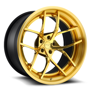 Niche Forged Caprese 5 Hi Luster Trans Gold / Brushed Gold Lip